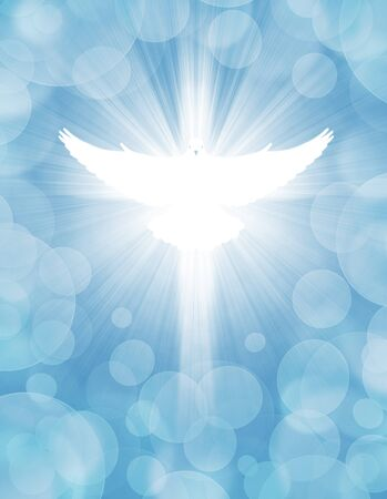 shining dove with rays on a light blue background Imagens