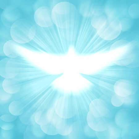 shining dove with rays on a soft blue background Stockfoto