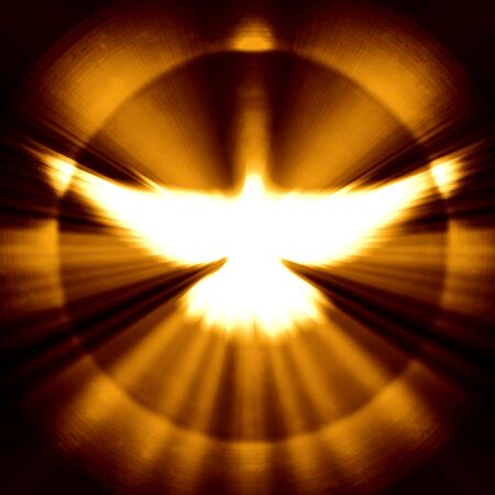 shining dove with rays on a dark golden background Banco de Imagens