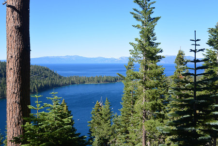 blue waters: Beautiful views of the blue waters and spruce