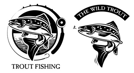 pez carpa: Pesca de la trucha