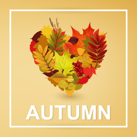autumn color: Autumn Typographical Background With autumn  color leaves