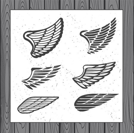 wings icon: Decoration Elements for Label, Logos, Emblems and Icons. Vector Isolated Tattoo Feathers. - stock vector Illustration
