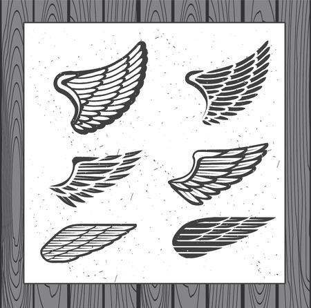 flucht: Deko-Aufbauten für Etikett, Logos, Embleme und Symbole. Vector Isolierte Tattoo Feathers. - Vektorgrafik Illustration