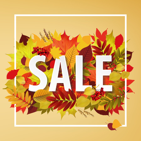 Autumn typographical backgroundWith autumn leaves. Autumn typographic. Fall leaf. Vector illustration EPS 10 Illustration