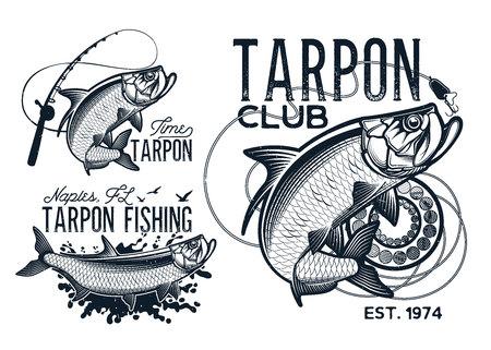 ビンテージ ターポン釣りエンブレム、ラベルおよびデザイン要素
