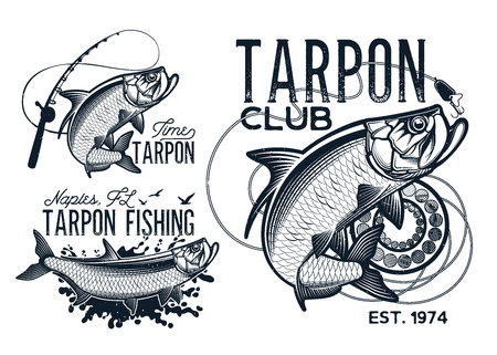 Vintage tarpon fishing emblems, labels and design elements