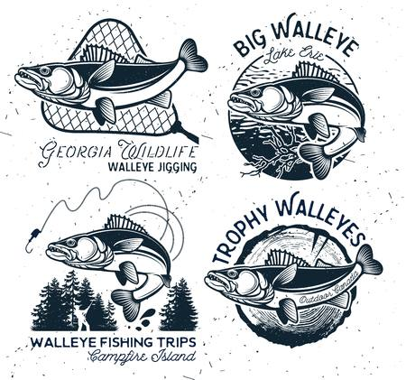 Vintage Walleye Fishing Emblems and Labels. Vector Illustration 일러스트