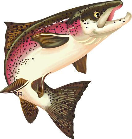 Salmon Fish Illustration Foto de archivo - 118847161