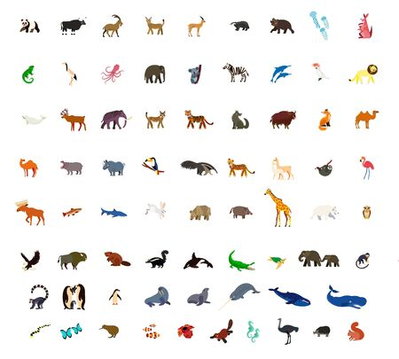 Animal Colorful Icon Set for Children and Kids. Vector Illustration.