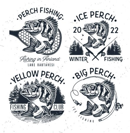 Eurasian River Perch Fish.Yellow Perch Fishing Club Emblem. Bass Fishing Isolated on White Background.