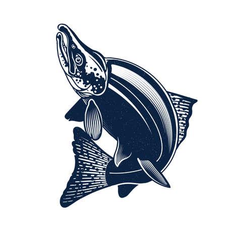 Sockeye Salmon Logo Illustration. Isolated on white background. 向量圖像