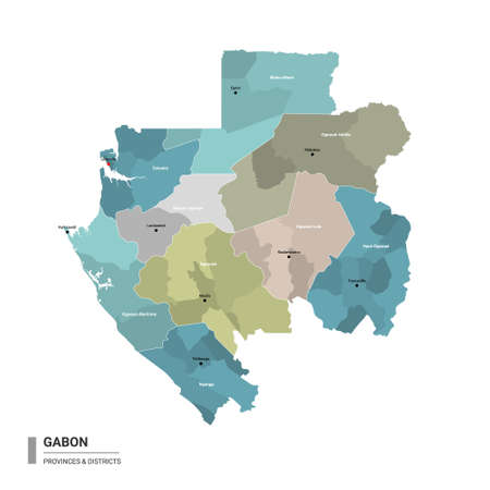 Gabon higt detailed map with subdivisions. Administrative map of Gabon with districts and cities name, colored by states and administrative districts. Vector illustration with editable and labelled layers. Ilustração