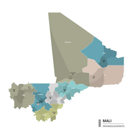 Mali higt detailed map with subdivisions. Administrative map of Mali with districts and cities name, colored by states and administrative districts. Vector illustration with editable and labelled layers. Ilustração