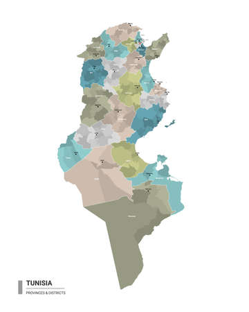 Tunisia higt detailed map with subdivisions. Administrative map of Tunisia with districts and cities name, colored by states and administrative districts. Vector illustration with editable and labeled layers. Ilustração