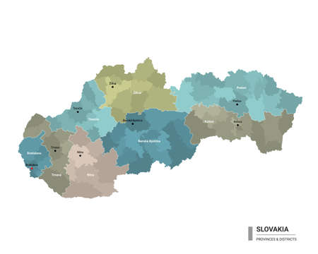 Slovakia higt detailed map with subdivisions. Administrative map of Slovakia with districts and cities name, colored by states and administrative districts. Vector illustration. 向量圖像