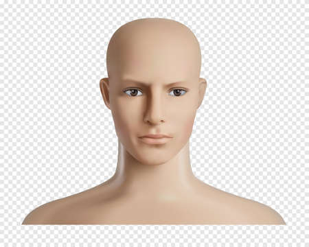 Vector 3d human model with face, feamale or male head mockup. Realistic dummy, mannequin head. Transparent background.