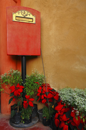 Italian style mailbox with flower photo
