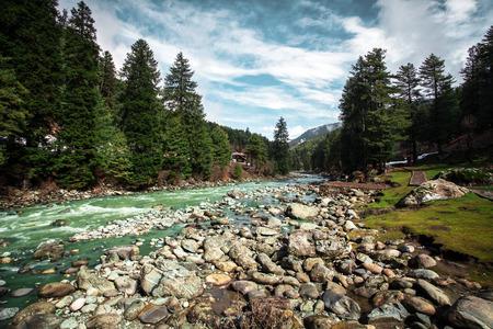 kashmir: The beautiful nature with Himalaya Mountain background (Kashmir, India)