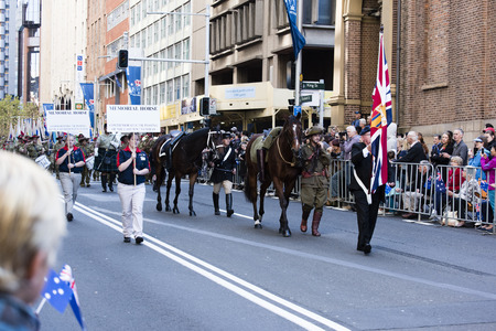 armed services: The memorial horse walks past the crowd down Elizabeth St