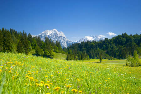 austrian landscape with meadows and mountains in the springtime Stock Photo