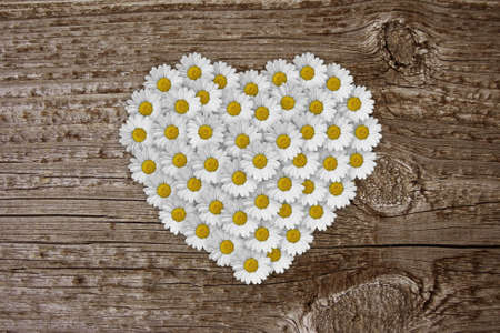 heart of dasies on old board