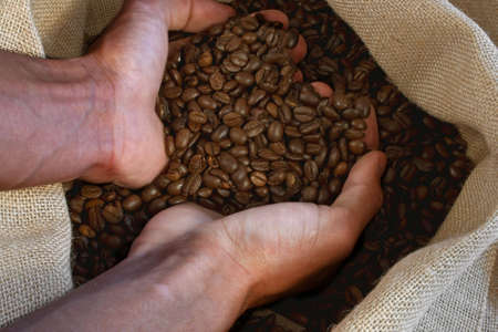 hand takes coffeebeans out of the bag Stock Photo