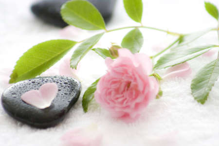 stone with water drips and shiny blossoms and petals