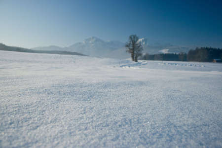 panorama of the alps suitable as backdrop for products