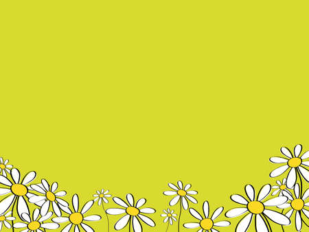 greeting card with marguerites