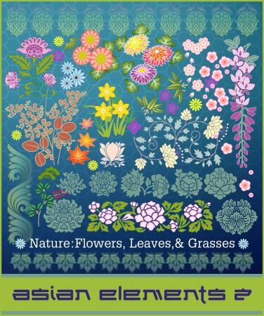 gramineas: Elementos de la Serie de Asia # 2: Naturaleza: hojas, flores y hierbas Vectores