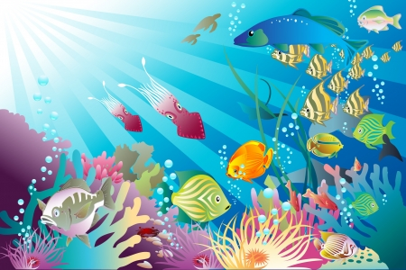 squid: Fish and other life forms frolic Under the Sea Illustration