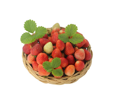 Fresh strawberries with leaves in basket isolated on white background.