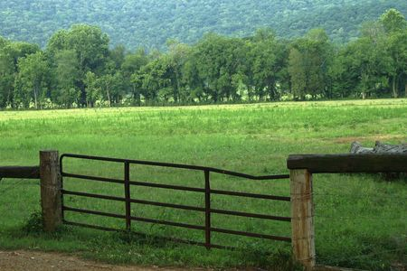 on pasture: Fenced in farm pasture land