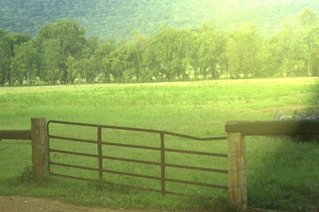 fenced in: Fenced in pasture land in bright sunshine  Stock Photo