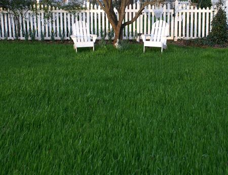 shady: Grassy lawn with shady place to rest