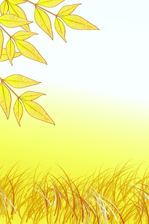 Leaves and grass Backdrop with space for text