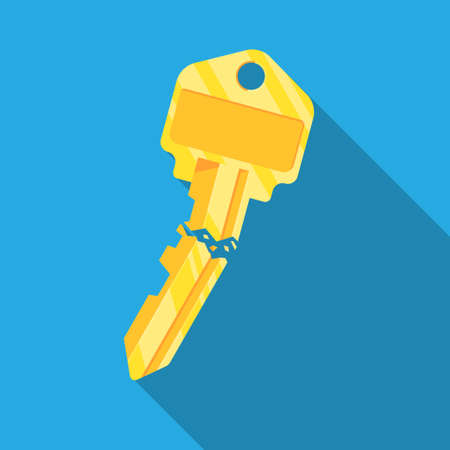 Broken key icon vector flat design.