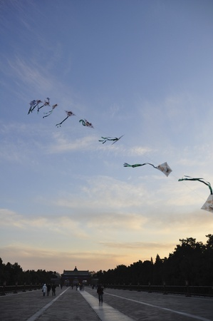 kites line fly in the sky of temple of heaven photo