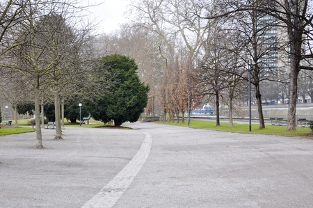 avenue in the park of central zurich