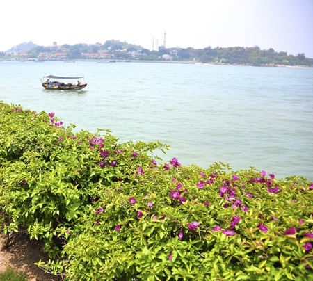 xiamen landscape with downtown and beach photo