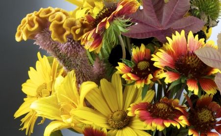 close up shot of autumn bouquet with various blooming flowers