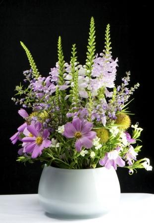 bouquet Cosmos bipinnatus shot in a flower pot