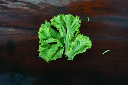 lactuca: Lactuca sativa On Wood Table Stock Photo