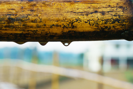 hard rain: Detail closeup of water drops on a bamboo railing