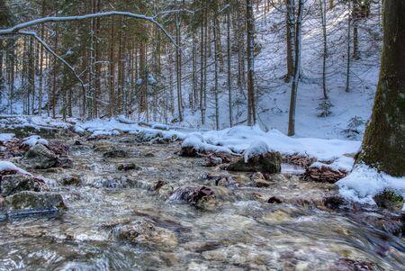 mountain stream in snowy landscape in mountains, slovakia mala fatra