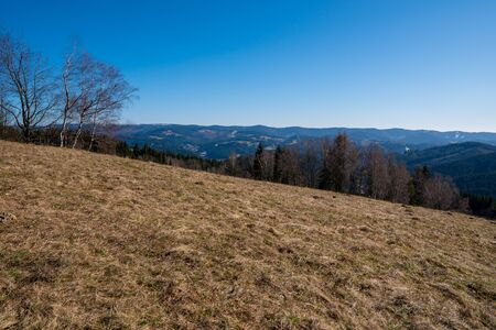 Meadow in mountains in early spring, Beskydy Mountains czech 版權商用圖片
