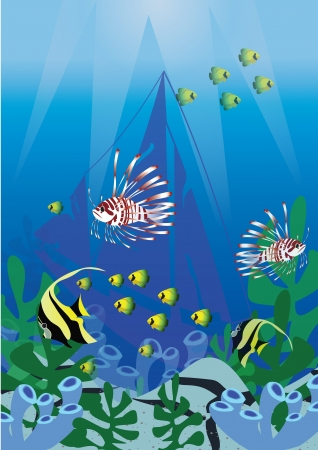 Ocean world  with many kind of fish Vector