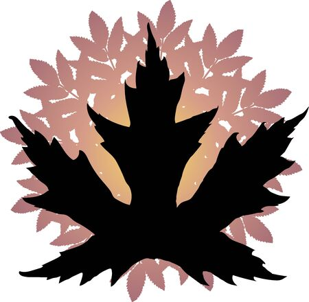 Black Maple Silhouette with Leaf Background Illusztráció