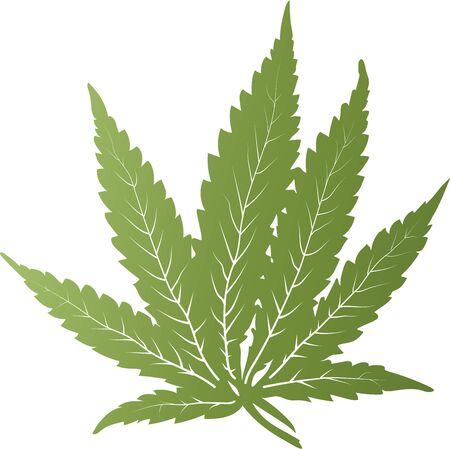 Vector green simple cannabis leave Illustration